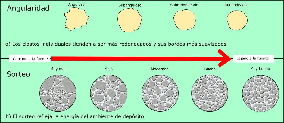 ▷ Rocas sedimentarias, clasificación, tipos, ejemplos e |( imágenes )|
