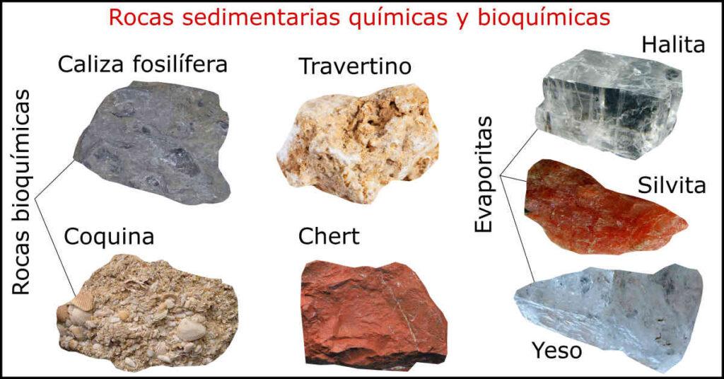 Rocas Sedimentarias Tipos Clasificación Y Ejemplos